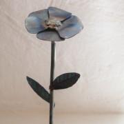 Blume-5(2328x3294)