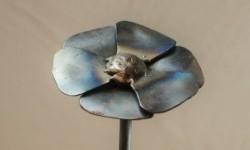 Blume-Detail